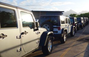 Rental Jeeps lined-up for departure