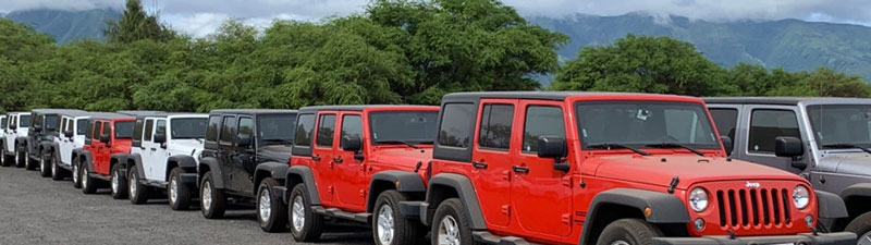 Jeep Wranglers preparing to be washed before they get dirty again